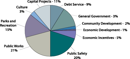 2012 Expenditures by Function.png