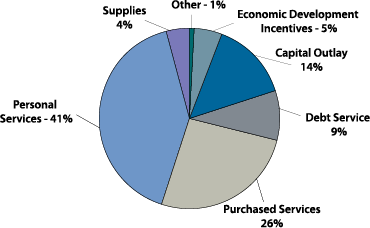 2012 Expenditures by Type2.png
