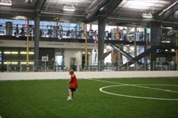 Indoor Sports Turf
